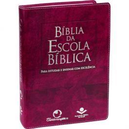 Bíblia da EBD Púrpura